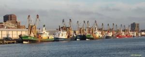 Vissersvloot aan de kade