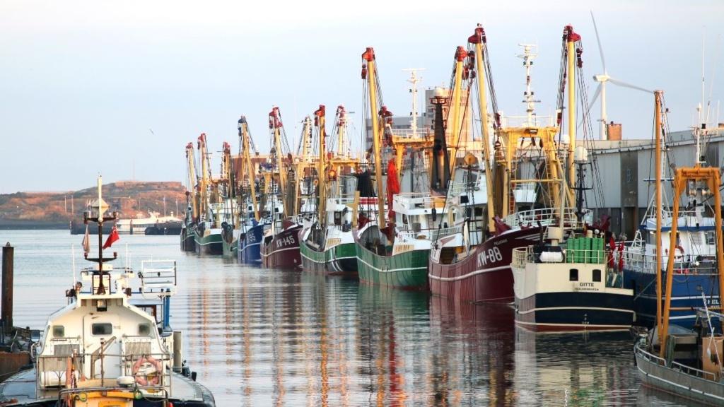 Haven IJmuiden